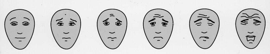Evaluation de la douleur chez les personnes g es - Echelle de sensibilite ...